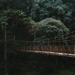 mysore-to-coorg