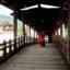 trip-to-bhutan